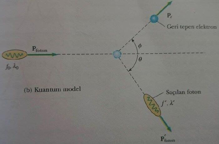 kuantum modeli
