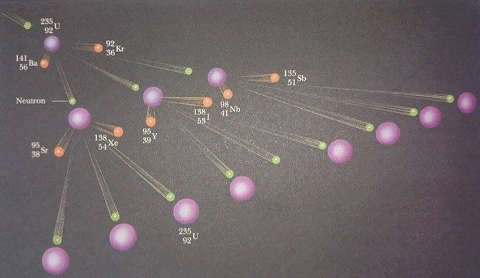 nötron yakalanması