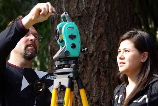 orman endüstri mühendisliği