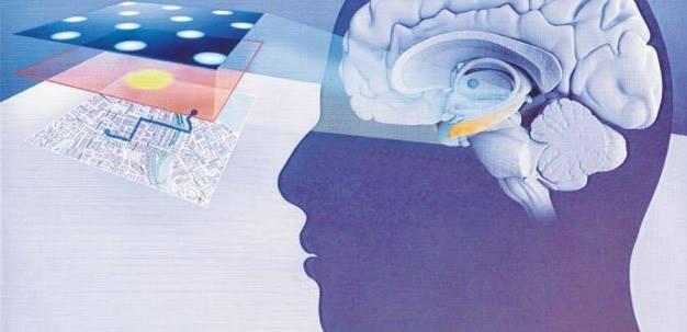 beyindeki GPS sistemi