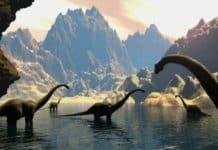 tortul kayaçlar nasıl oluşur