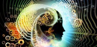 beyin hakkında doğru bildiğimiz yanlışlar nelerdir sorular