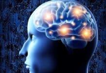 Zayıf Elektrik Alan İle Beyin Etrafında Bilgi Aktarımı