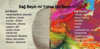 Sağ beyin sol beyin testi