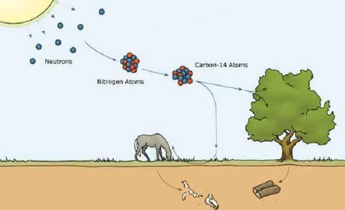 Karbon 14 Metodu