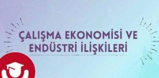 Çalışma Ekonomisi Ve Endüstri İlişkileri Nasıl Bir Bölüm