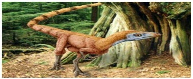 sinosaurpteryx