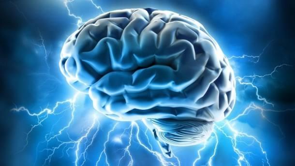Laboratuvarda insan beyni üretildi.jpg