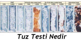 tuz testi nedir