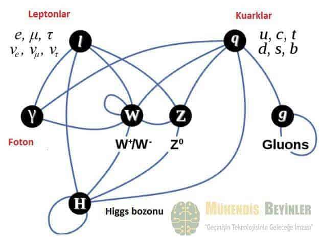 foton ve higgs bozunu