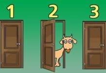 Monty Hall Problemi