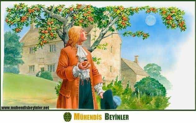 newton Kütle çekim kuvveti elma düşmesi olayı