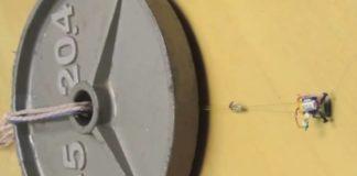 Ağırlığının 100 katını Taşıyabilen Mini Robot