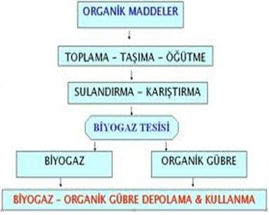 Organik madde çürüme akışı