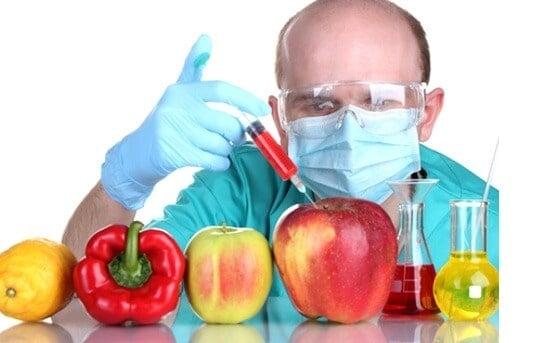 gıda mühendisliği maaşları
