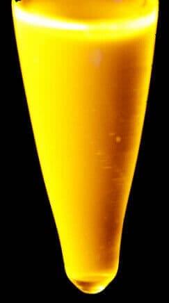 mangan katkılı kuantum nokta