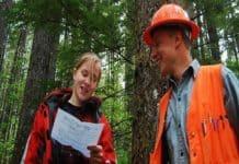 Orman Endüstri Mühendisi