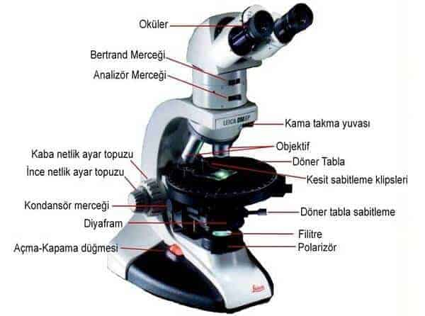 optik mikroskop