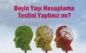 beyin yaşı hesaplama testi