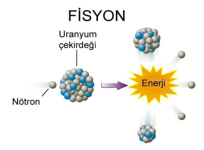 Fizyon