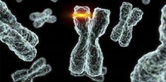 mutasyon nedir ve mutasyon sonucu oluşan şaşırtıcı hastalıklar