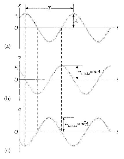 basit harmonik hareket şekilleri
