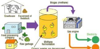 organik atıklardan biyogaz üretimi nasıl