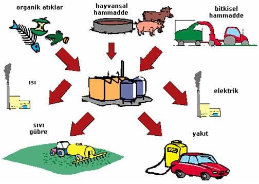 organik atıklardan biyogaz üretimi