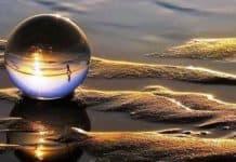 fenomenoloji nedir felsefe