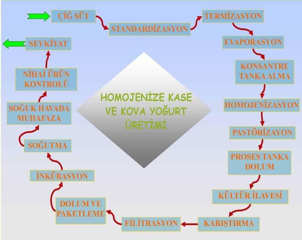 homojenize-kase-ve-kova-yogurt-uretimi