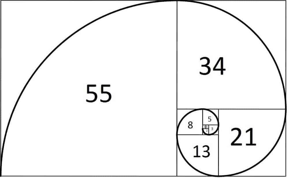 Fibonacci nedir