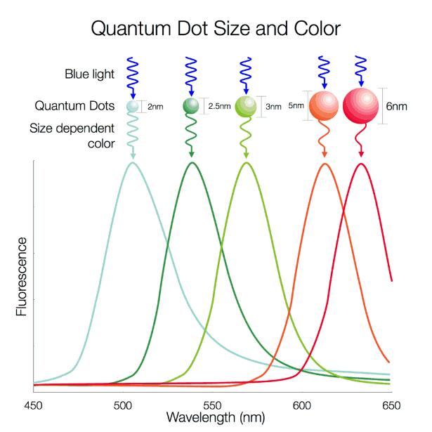 Kuantum noktaların boyutlarının renk ışıması