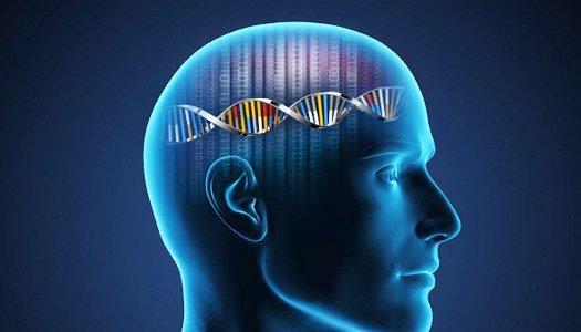 DNA Bilgisayarı 2