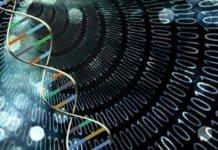 DNA Bilgisayarı