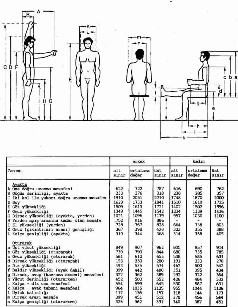 Antropometrik Bakışla Çalışma Ortamı Tasarımı