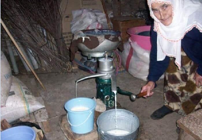 köy sütü