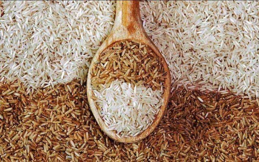 Pirinç ve GDO Gerçeği