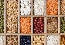 tohum üretimi nasıl yapılır