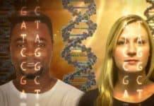 Karakter Genetik midir