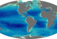 Dünya Üzerindeki Okyanuslar