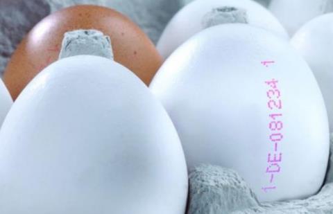 yumurta üzerindeki sayılar