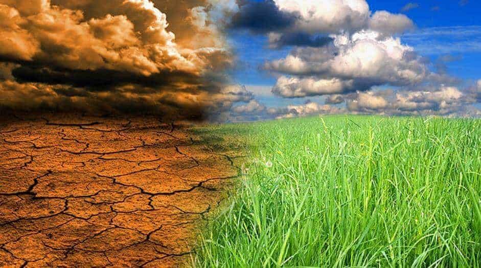 İklim Tipleri