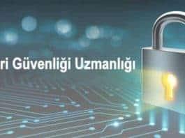 Veri Güvenliği Uzmanlığı Nedir