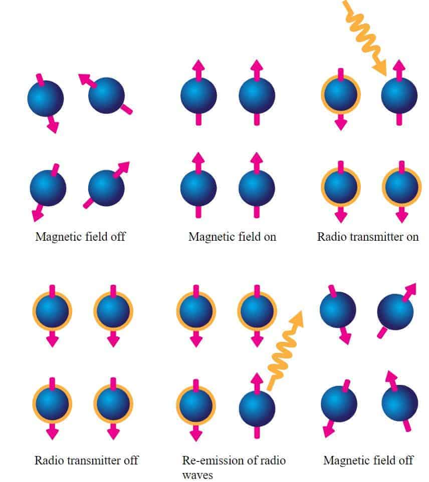 Manyetik Rezonans Görüntüleme nasıl çalışır