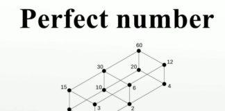 Mükemmel Sayı Nedir