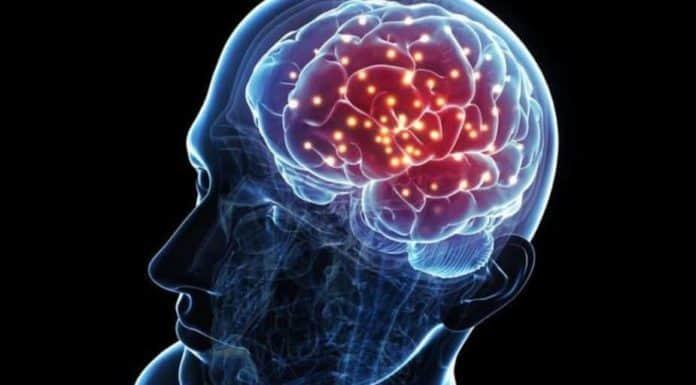 Beyin İletişimi