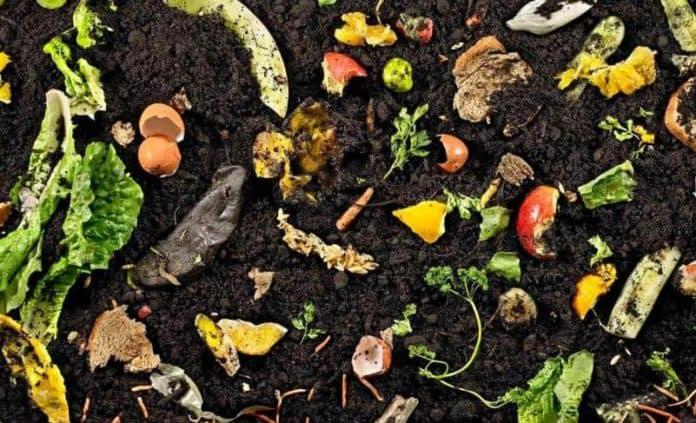 Kompost Nasıl Yapılır