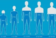 İnsan Vücudunda En Çok Su Nerede Var