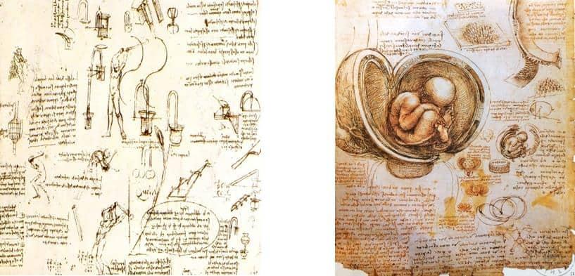Leonardo da Vinci'nin bilimsel çalışmaları