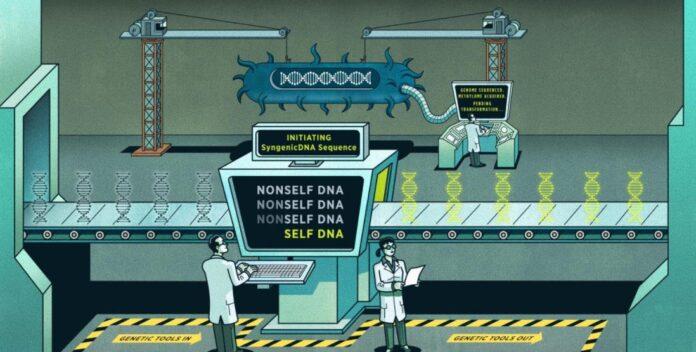 Genetik Mühendisliğinin İnsanlığa Yarar ve Zararları
